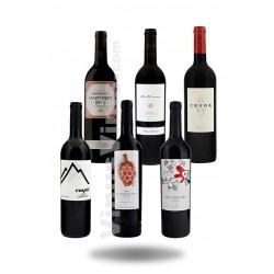 Pack Vinos Priorat Medium Cost