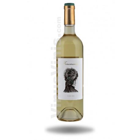 Vin Fenomenal 2016 (magnum)
