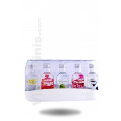 Vodka Absolut Saveurs Pack (5cl)
