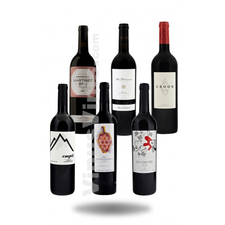 Priorat Wine Pack Medium Cost